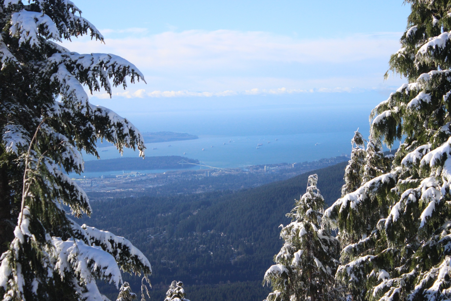 Dog Mountain Snowshoe Trail - North Vancouver, BC - CANDICE