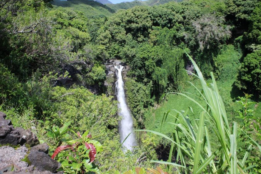 waterfall maui